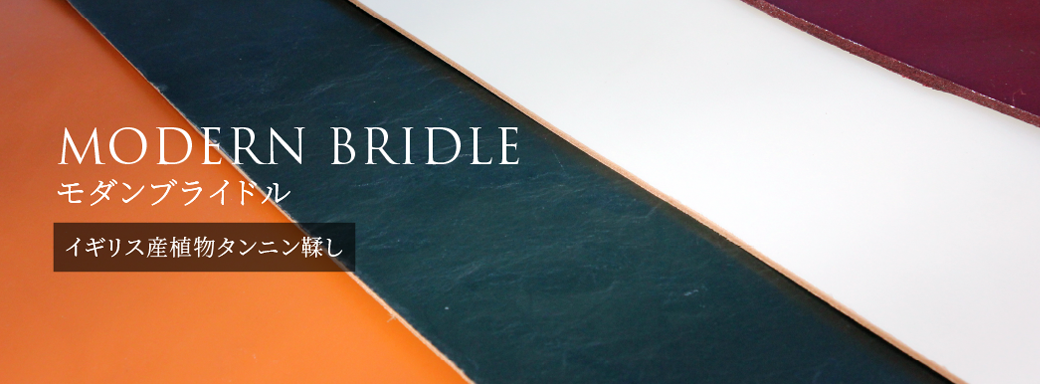 MODERN BRIDLE